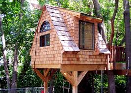 basic tree house pictures. Basic Tree House Pictures L