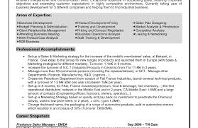 Resume Why This Is An Excellent Resume 11 Wonderful Help Writing