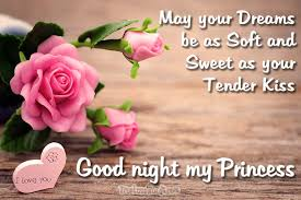 good night my love good night messages for her