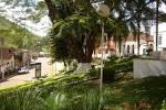 imagem de Bias Fortes Minas Gerais n-16