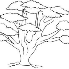 Small Picture Coloring Pages Trees Great Dead Tree Outline Coloring Page Free
