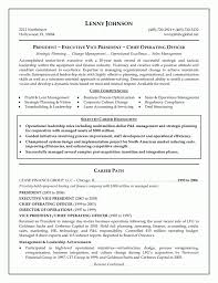 Resume Template Executive Www Psycarespb Com
