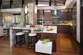 Beautiful and sleek modern open kitchen - Open Kitchen Designs