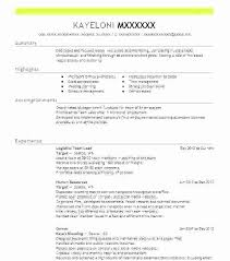 Sample Resume For Team Lead Position Team Lead Resume Sample Leader Retail Examples Mmventures Co