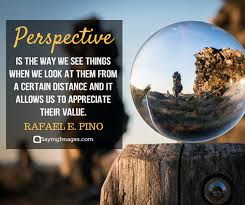 Perspective Quotes New 48 Perspective Quotes That'll Transform Your Views In Life