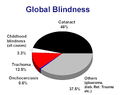 blindness vision the global initiative for the  avoidable blindness