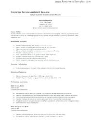 What To Put In Professional Profile On Resume Professional Profile For Teacher Resume Example Examples Of Profiles