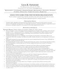 Resume Summary Examples Nonprofit Resume For Study