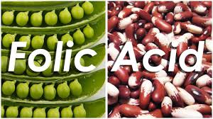 List Food Are Highest In Folic Acid Content Sources Of Folate Pregnancy