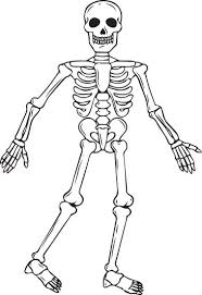 Small Picture Halloween Skeleton Coloring Pages Skeleton Printable Coloring