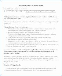 Resume Executive Summary Examples Best Of Examples Summary