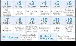 Hylands Bioplasma Homeopathic Cell Salts 1000 Ct