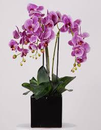 Amazoncom THREE 18Artificial Flower Decoration For Home