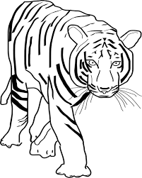 Small Picture Realistic Tiger Coloring Page Kids Corner Pinterest Kids corner