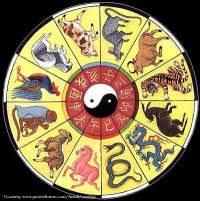 Chinese Year Chart Dr Nikki
