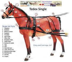horse harness carriage driving strong quality zilco tedex all sizes horse harness at Horse Harness