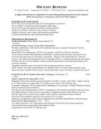 Account Manager Resume Examples