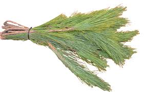 Red Pine Bough Bundle (2 lbs. 6-10 boughs depending on size)