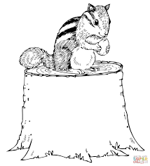 Small Picture Chipmunk Eating Nut on Tree Stump coloring page Free Printable
