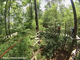 treetop family adventure callaway gardens in pine mountain georgia