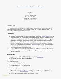 Short Resume Format Gorgeous 28 Unique Best Resume Format For Experienced PelaburemasperaK