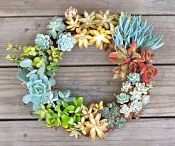 Small Picture Best Of Tips Outdoor Succulent Garden Design Looks Perfect