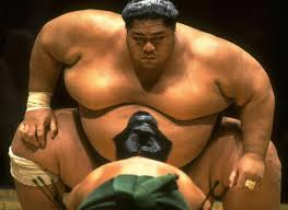 the ideal weight for a sumo wrestler is anything from 400 to 600 pounds this means that it takes not only strength and flexibility to be a sumo it also