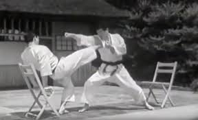 Watch This Rare Footage of Hirokazu Kanazawa & Hidetaka Nishiyama Training  in Shotokan Karate Do. - Martial Arts World News Magazine