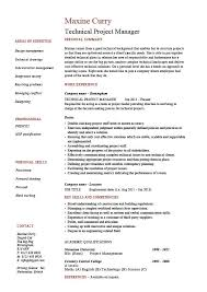 Technical Project Manager Resume Example Job Description Skill