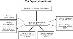 Cdrh Org Chart Regulatory Issues Springerlink