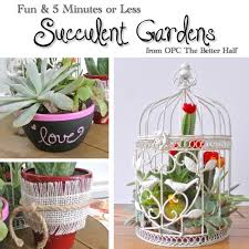 Small Picture Three Easy Succulent Garden Ideas One Project Closer