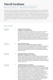 Web Application Developer Resume