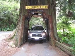 tour through tree klamath 2018 all you need to know before you go with photos tripadvisor
