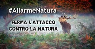 Risultati immagini per natura e biodiversità