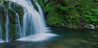 Image result for spring of water