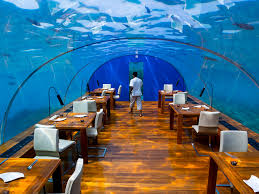 underwater restaurant disney world. Impressive Underwater World Restaurant Best Design Ideas Disney