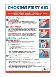 Infant Choking Chart Choking First Aid Poster 12 X 18 In Laminated Instructions For Infants Children And Adults
