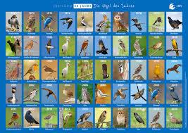 Ein guter zeitpunkt also, den putzigen vogel des jahres 2017 vorzustellen. Vogel Des Jahres Lbv Gemeinsam Bayerns Natur Schutzen