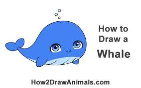 how to draw cute chibi cartoon blue whale