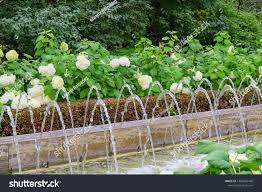 Fountain Water Feature Design Creative Water Feature Design Ideas Garden Stock Photo Edit