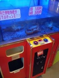 Lobster Vending Machine Cool Notícias