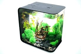 aquarium for office. Office Desk Fish Tank Tanks The Jellyfish . Aquarium For