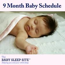 How Much Sleep Infant Chart 9 Month Old Baby Schedule Sample Schedules The Baby