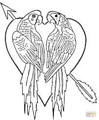 Small Picture Singing Parrot coloring page Free Printable Coloring Pages