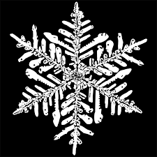 Snowflake Texture Barca Fontanacountryinn Com