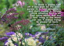 Color Purple Quotes Fascinating Alice Walker The Color Purple Quote Facebook Pinterest Alice