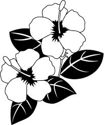 夏の花1 16 ハイビスカスイラスト ハワイ ハイビスカスハワイアン