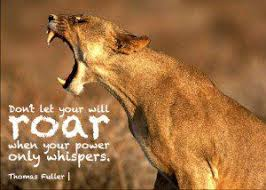 lioness and cubs quotes. Unique And Lioness And Cubs Quotes For I