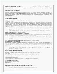46 Printable Healthcare Resume Examples Hospital Resume Examples