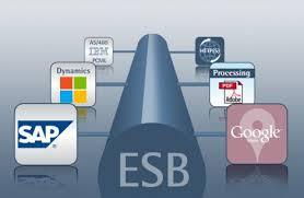 Enterprise Application Integration With The Enterprise Service Bus Esb
